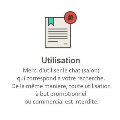Règles du Tchat Gratuit de Rencontre-Intelligent.eu